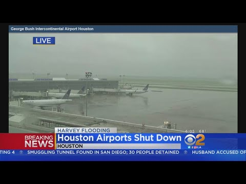 Flooding In Houston Forces Flight Cancellations, Delays At LAX