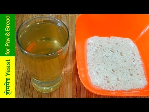 आसान तरीके से बनाये घर में yeast for bakery style (ladi pav,bread,pizza) /How To Make Yeast at home