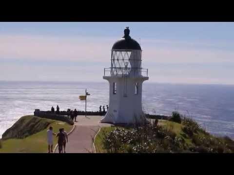 Cape Reinga/90 Mile beach Sight See New Zealand's Far North
