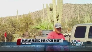 Cactus thief arrested after being caught on camera