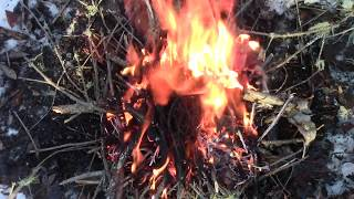 How To Light A Fire When The Woods Are Wet
