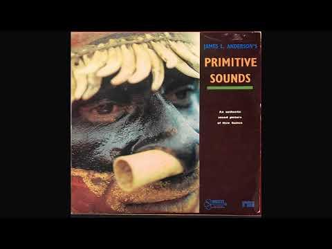 James L. Anderson's primitive sounds. Side 1