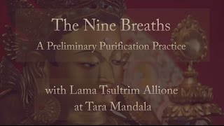 The Nine Breaths - A Preliminary Purification Practice
