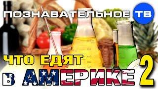 Что едят в Америке 2 (Познавательное ТВ, Наталия Локоть)