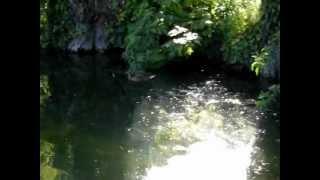 Charente Maritime : Surgères, ville de l'Aunis    .wmv