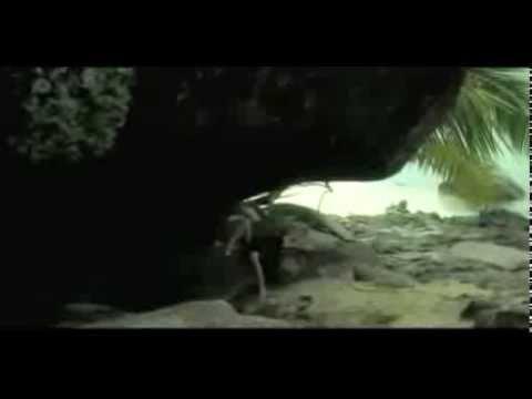 7 - Stars Villas In The Seychelles