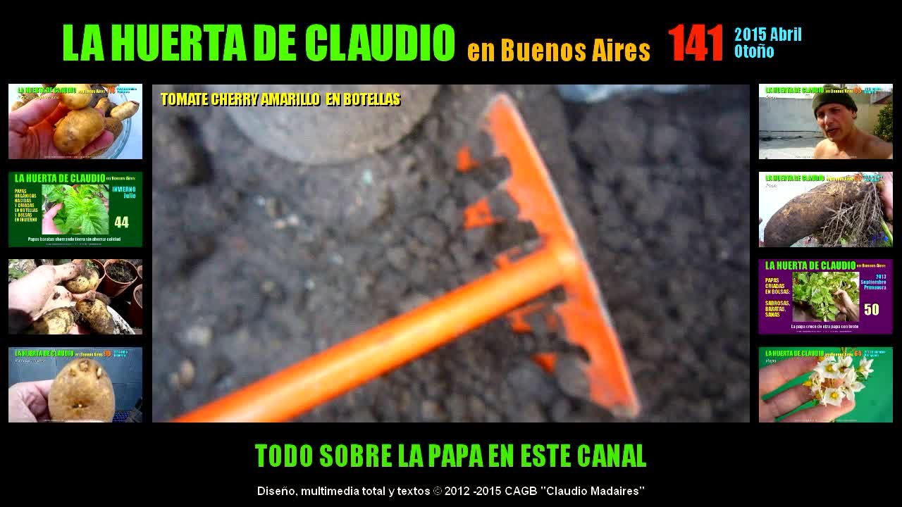 Cultivar Tomates Cherry Cool Tomate Patio With Cultivar Tomates  ~ Como Cultivar Tomates En El Huerto