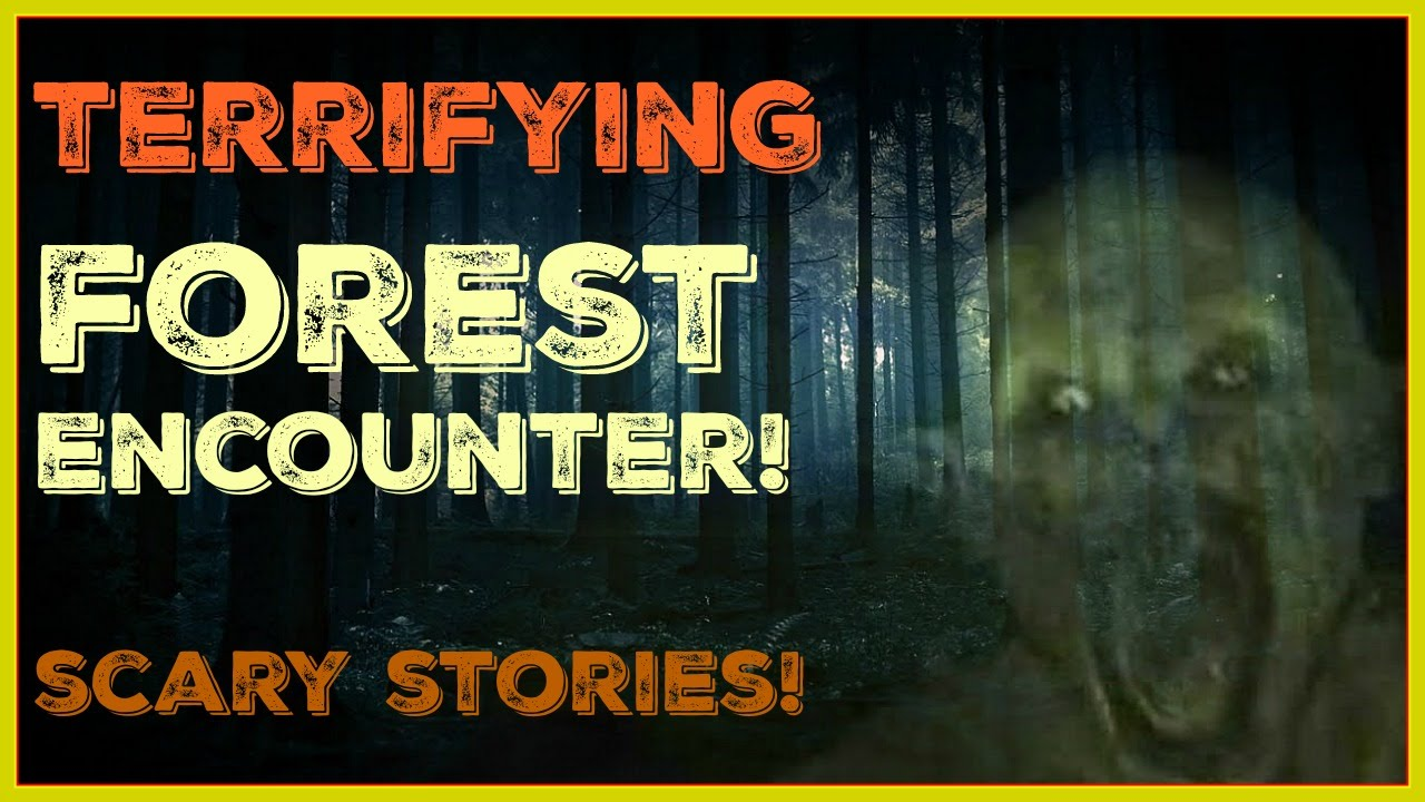 scary forest story World's most haunted forests plotting how to bring about the downfall of mankind—or so the story goes this 50-acre forest.