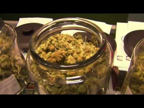 Arizona medical cannabis business expo in Phoenix