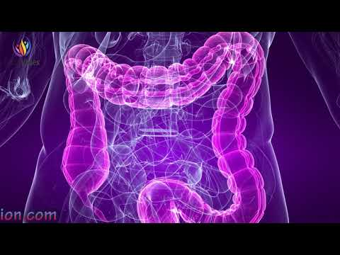 Powerful Stomach & Intestine Treatment Sound Therapy - Digestion Enhancement Binaural Beats #GV141