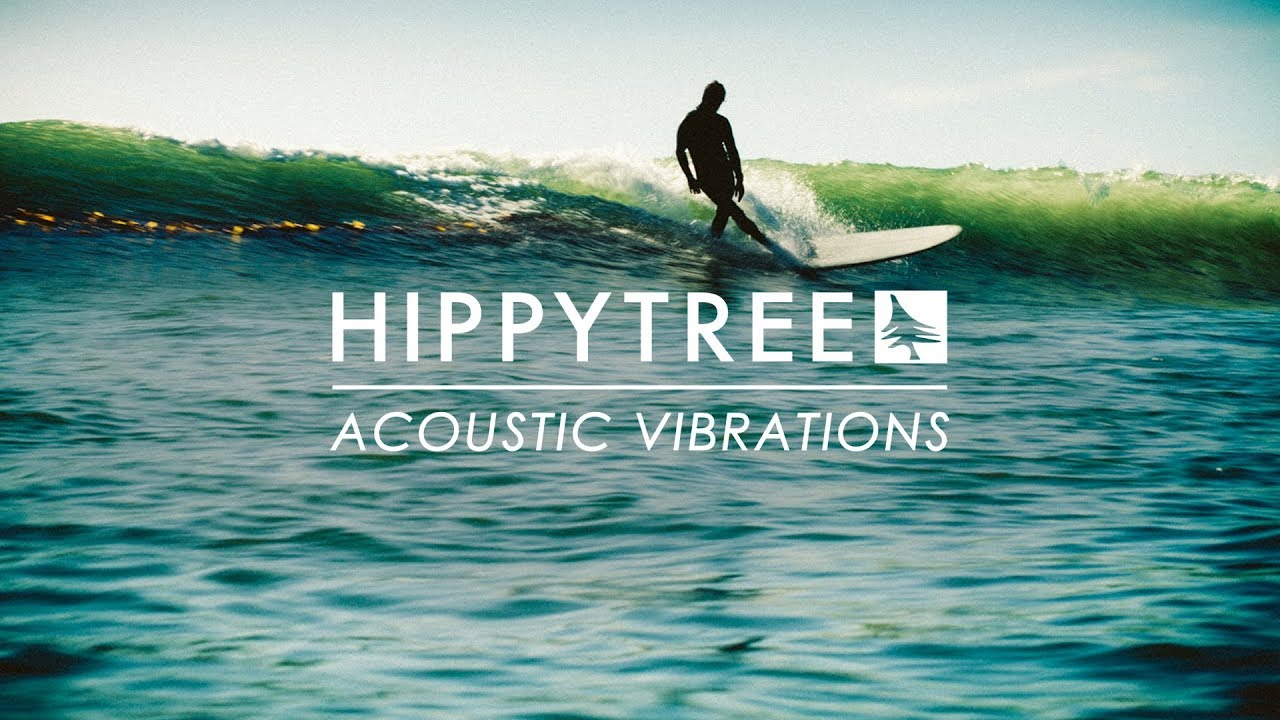 HippyTree / Acoustic Vibrations
