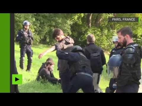Bois de Boulogne : 41 personnes arrêtées lors de la «chasse aux DRH»