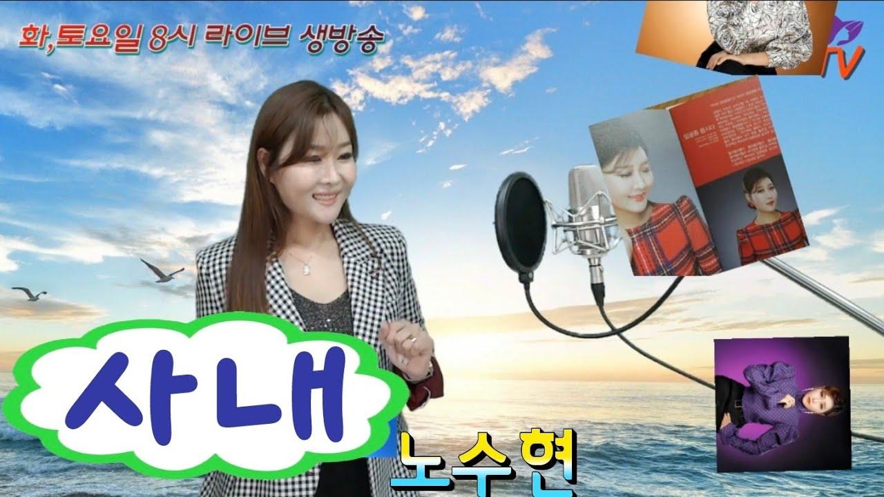 나훈아-사내  (노수현COVER)