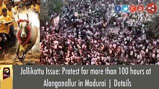 Jallikattu Issue: Protest for more than 100 hours at  Alanganallur in Madurai | Details