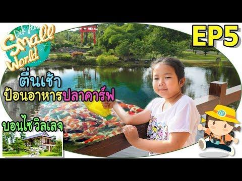 เด็กจิ๋วตื่นเช้าให้อาหารปลาคาร์ฟ (บอนไซ วิลเลจ สวนผึ้ง Ep5) - วันที่ 19 Jul 2018