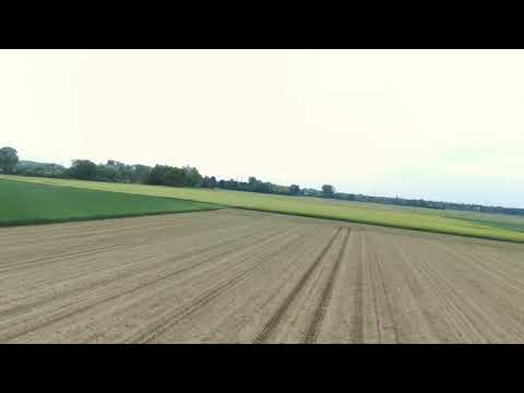Parrot Disco - 1st fly and nice landing