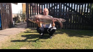Eco fishing - 23. - Canal fishing 5.: Small silver carps + the boss