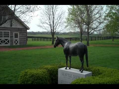 Thoroughbred Horse Farms In Lexington, KY