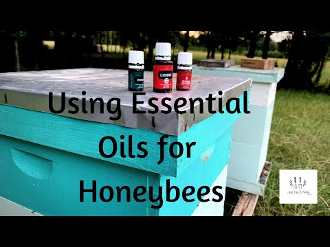 essential-oils-for-honeybees