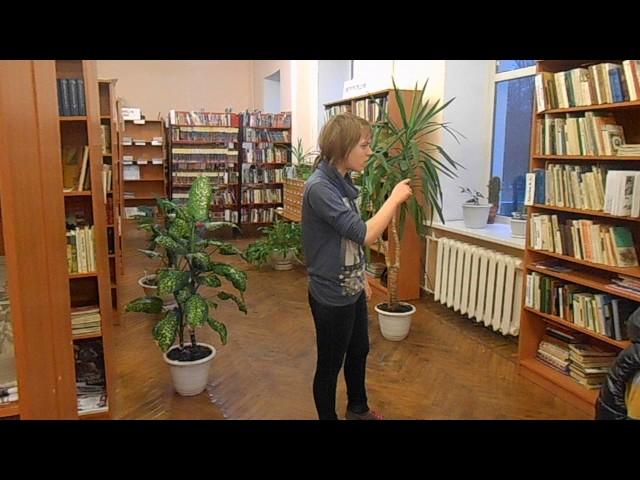 Изображение предпросмотра прочтения – ЮлияЕресь читает произведение «Стрекоза и Муравей» И.А.Крылова