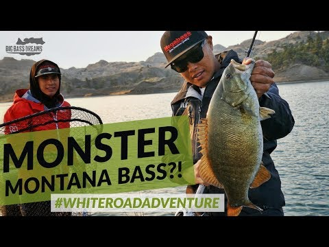 Monster Montana Bass Fishing - White Road Adventure Part 1 Montana