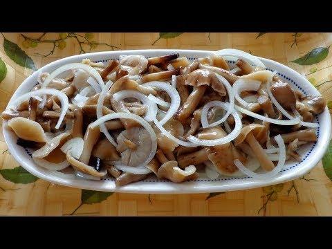Как посолить грибы опята в домашних условиях вкусно