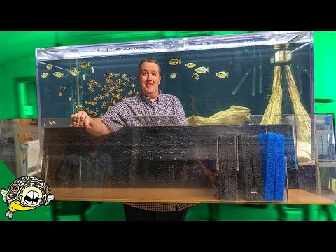DIY Aquarium Sump Filter
