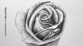 How to Draw a Rose With Pencil