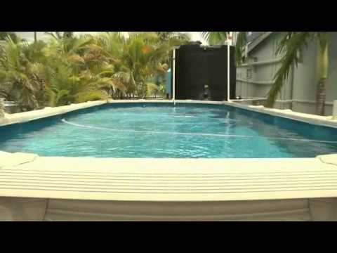 pool builders caboolture classic pools qld youtube