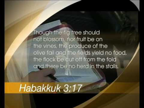 Habakkuk - the questioning prophet