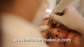 Permanent Makeup - 888-943-8880 - Permanent Eyebrows and Eyebrow tattoo - MicroArt™ Thumbnail