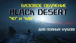 Базовое обучение в Black Desert
