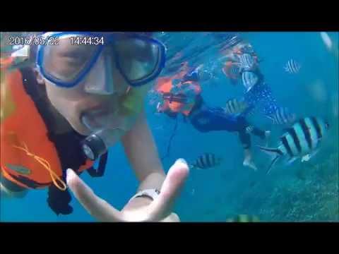 Snorkeling @ Pulau Tioman, Malaysia