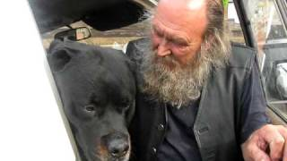 Large Rottweiler And John