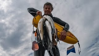 British spearfishing champion - what does it take?
