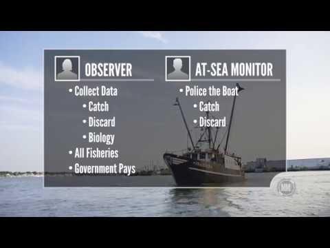 Fishing Wars: Drowning in Regulations - CRTV.com's Michelle Malkin Investigates