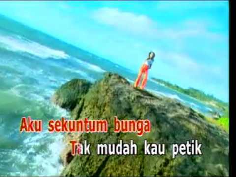 lagu dangdut KUMBANG KUMBANG ade irma