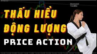 ✅Thấu Hiểu Động Lượng Của Giá Qua Price Action   TraderViet