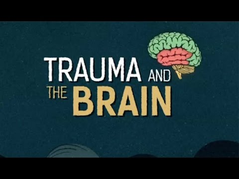 Childhood Trauma Leads To Brains Wired >> Trauma And The Brain