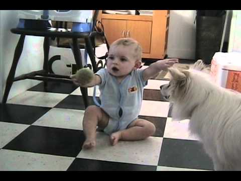 Dog Teaches Baby to Play Fetch with Her