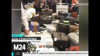 Коллапс в аэропорту Внуково ликвидирован - Москва 24