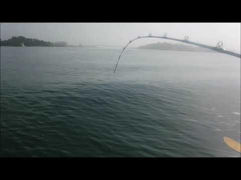 Halibut by Kayak - Humboldt Bay Limit - July 2018