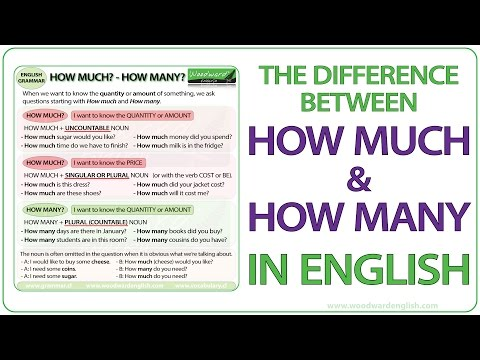 How much? How many? - English Grammar Lesson