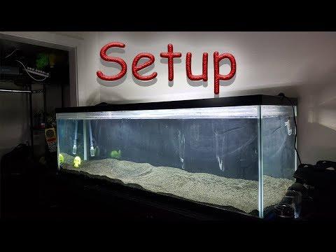 100 Gallon Predator Fish Tank Setup Part 1