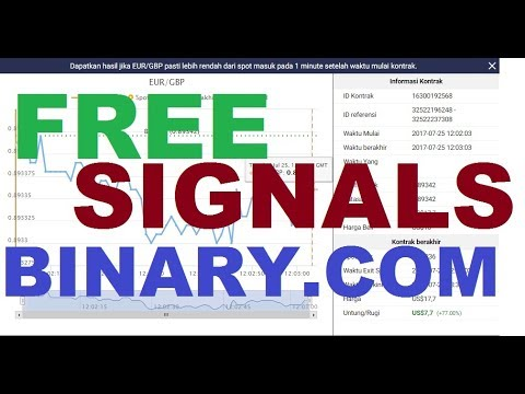 Auto binary signals results of summerslams