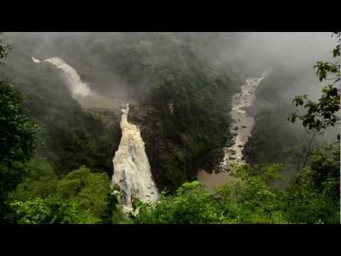 'Jaya Hai Kannada Thaye' Kannada Wildlife Music Video- Anthem