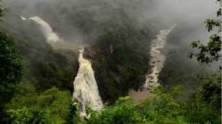 Download Hindi Video Songs - 'Jaya Hai Kannada Thaye' Kannada Wildlife Music Video- Anthem