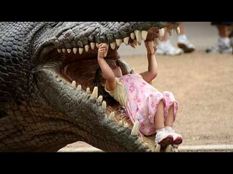 Most hilarious BABY & TODDLER & KID videos #2 – Funny and cute compilation- Watch and laugh!