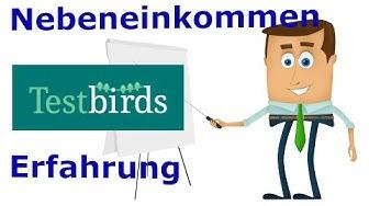 Nebenbei Geld verdienen als Softwaretester - Erfahrung mit Testbirds.de €€€
