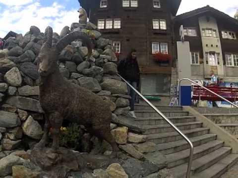 pame Zermatt 2012